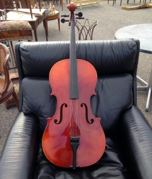 Viola originale